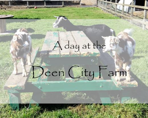 Deen City Farm
